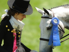 """Me Again won at an """"old time"""" hunter derby"""