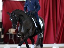 Jan Brink riding Duet