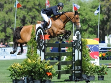 McLain Ward on Cannavaro D