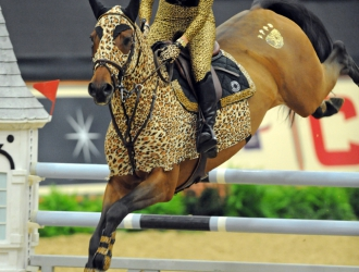 2014 National Horse Show Costume Gambler's Choice