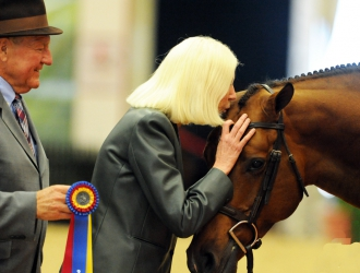 2014 National Horse Show Open Hunters
