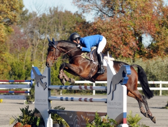 2014 The Dutta Corp Fair Hill International CCI*** Show Jumping 1