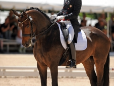 Steffen Peters Enjoys The Moment