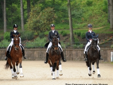 The Future Of Dressage