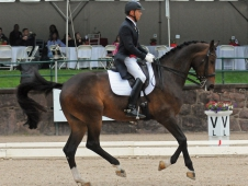 Steffen Peters and Rosamunde
