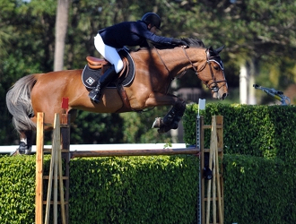 2015 $50,000 Equestrian Sotheby's Jumping Derby