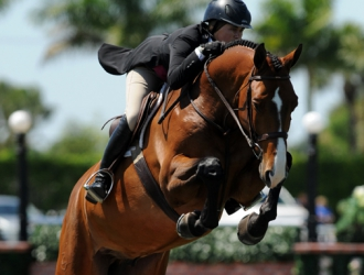 2015 $50,000 USHJA International Hunter Derby Handy Round