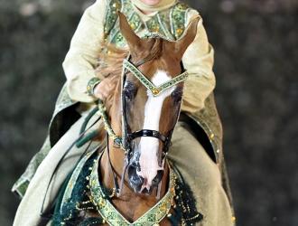2015 Arabian U.S. Open At Rolex Central Park Horse Show