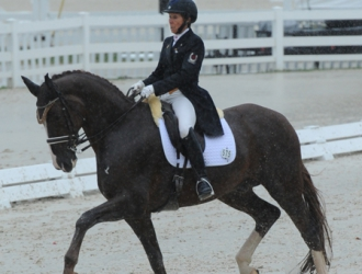 2015 Dressage At Devon—Friday