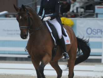 2015 Dressage At Devon—Saturday