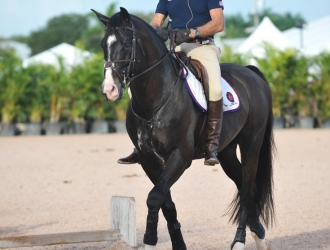 2015 George H. Morris Horsemastership Training Session - Day 4