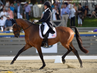 2015 Great Meadow International CIC*** - Friday