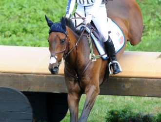 2015 Great Meadow International CIC***—Sunday