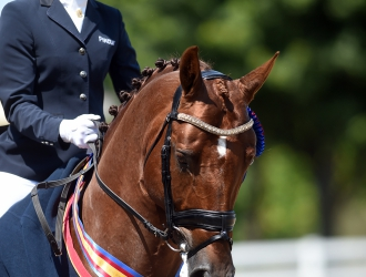 2015 USEF Young Horse, Developing Horse And Festival Of Champions-Sunday