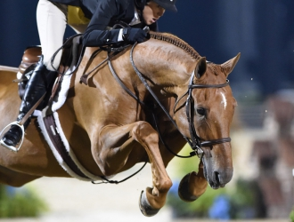 2015 USHJA International Hunter Derby Championships—Handy Round