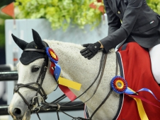High Junior/Amateur-Owner Jumper Champion