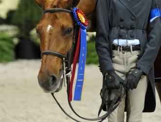 2015 Washington International Pony Hunter Champions