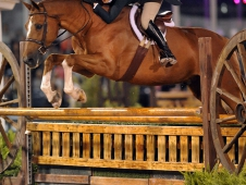 Stephanie Danhakl and Golden Rule