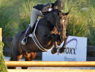 2016 HITS Ocala $100,000 USHJA International Hunter Derby