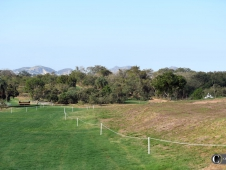 A view of the cross-country course