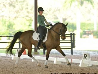 2016 Robert Dover Horsemastership Clinic—Saturday