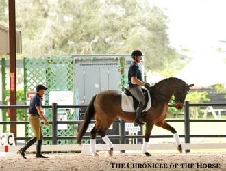 2016 Robert Dover Horsemastership Clinic—Wednesday