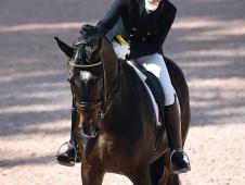 Tinne Vilhelmson-Silfven and Paridon Magi