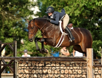 2016 Upperville $20,000 USHJA International Hunter Derby