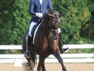 2016 Young Horse Championships And Dressage Festival Of Champions-Friday