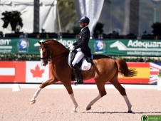 Steffen Peters and Bailarino