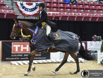 2017 Capital Challenge Horse Show - WCHR Pro Final