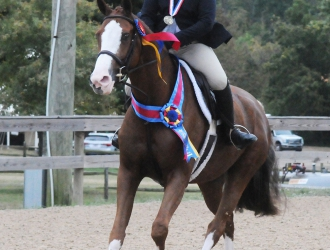 2017 Capital Challenge Horse Show— Sunday