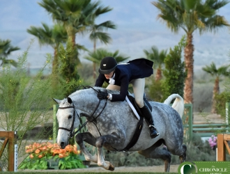 2017 HITS Coachella VIII $50,000 USHJA International Hunter Derby