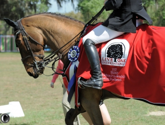 2017 Live Oak International Horse Show $10,000 Power And Speed