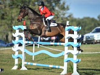 2017 Ocala Jockey Club International - CIC*** Show Jumping