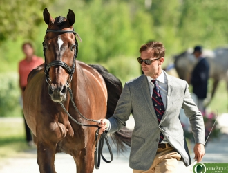 2017 Pedigree Bromont CCI Final Horse Inspection