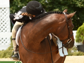 2017 USEF Pony Finals - Regular Mediums