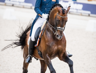2017 Rotterdam CHIO Dressage Grand Prix Special And Freestyle