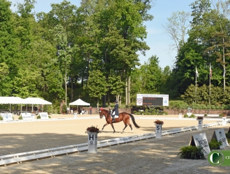 2017 The Dutta Corp. U.S. Dressage Festival of Champions Sunday