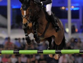 2017 Winter Equestrian Festival $216,000 The Wanderers Club CSI**** Grand Prix