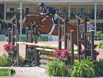 2017 Winter Equestrian Festival WCHR Week Amateur-Owner Hunters