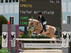 WEB 1 Pony Jumpers Sprite Taylor Briesfield