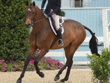 WEB 2. Inquisitive Hallie Grimes $3000 SMALL JUNIOR HANDY HUNTER 15 & U O-FLMB_6778