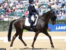 18KYSeversonDressage