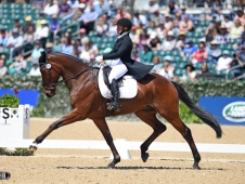 18KyRutledgeDressage