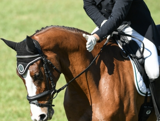 2018 Ocala Jockey Club CCI** Dressage