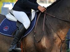 WEB Tisbo saddle COH_6069