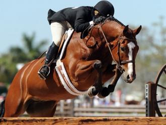 $50,000 Chronicle of the Horse/USHJA International Hunter Derby