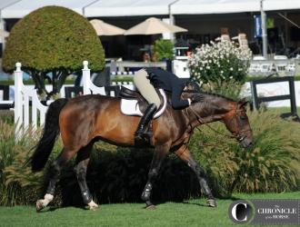 All Around The Hampton Classic Horse Show