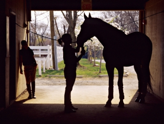 Centenary College's Equestrian Program Teaches More Than Good Riding